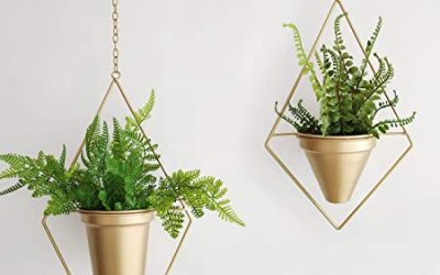 High-Quality Metal Flower Pot Manufacturing to Give a Garden an Upgrade