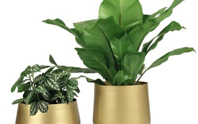 Elements of a Simple Metal Flower Pot