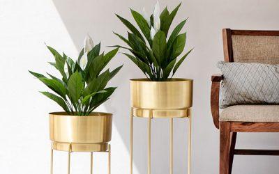 Drawbacks of the Metal Flower Pots