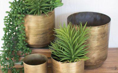 The Drawbacks of Using Metal Flower Pots