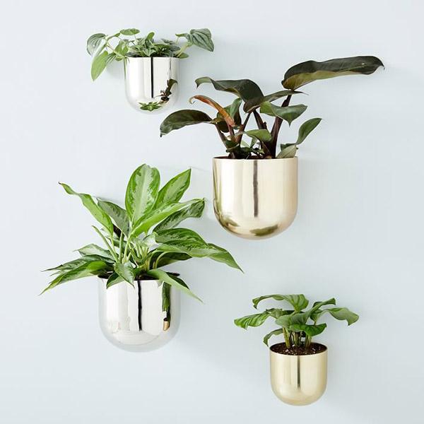 The New Trends in Metal Flower Pots